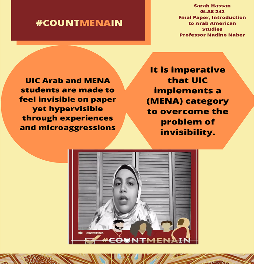 It is imperative that UIC implements a (MENA) category to overcome the problem of invisibility.